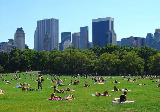 Un parque verde