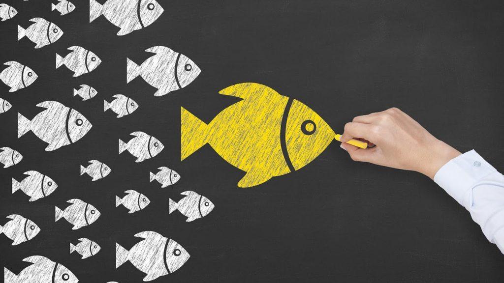 Influencer Marketing o Facebook Ads: ¿Cuál es la Mejor Publicidad para Tu Tienda Online?